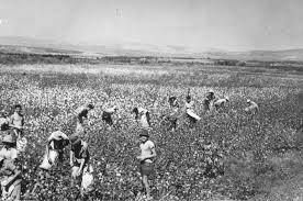 """Kibbutz life early 1900""""s"""